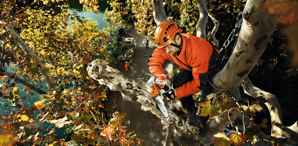 Cardiff Lawn and Garden main chain saw dealers for cardiff
